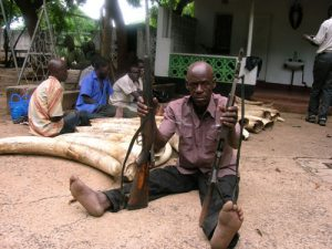 Zambian poacher and trafficker. Photo: ZAWA/LATF