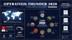 INT-Operation_Thunder_2020-INTERPOL