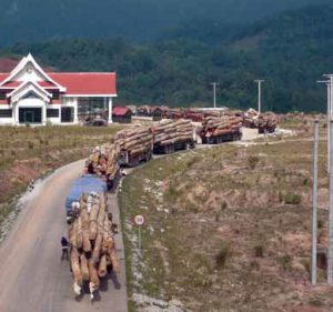 Log trucks waiting to cross Laotian border. By EIA