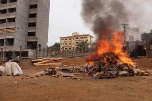 Pangolin_scale_burn_in_Cameroon_14_-_Linh_Nguyen_Ngoc_Bao_-_MENTOR-POP
