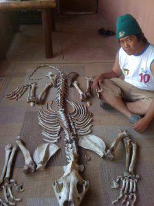 Vixay-Alleged_Xaysavang_syndicate_member_with_lion_bones_-_Julian-Rademeyer