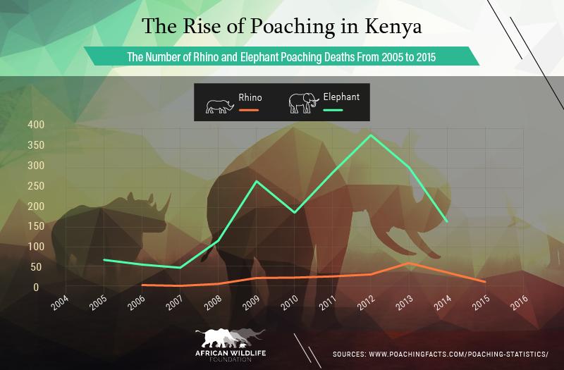 The Rise of Poaching in Kenya