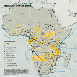 Illegal Ivory Trafficking Routes (Africa). Source: CITES Elephants in the Dust, page 48.