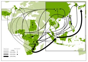 Trade routes for large-scale (>500kg) seizures of ivory (2000-2008). Source: IUCN/TRAFFIC.